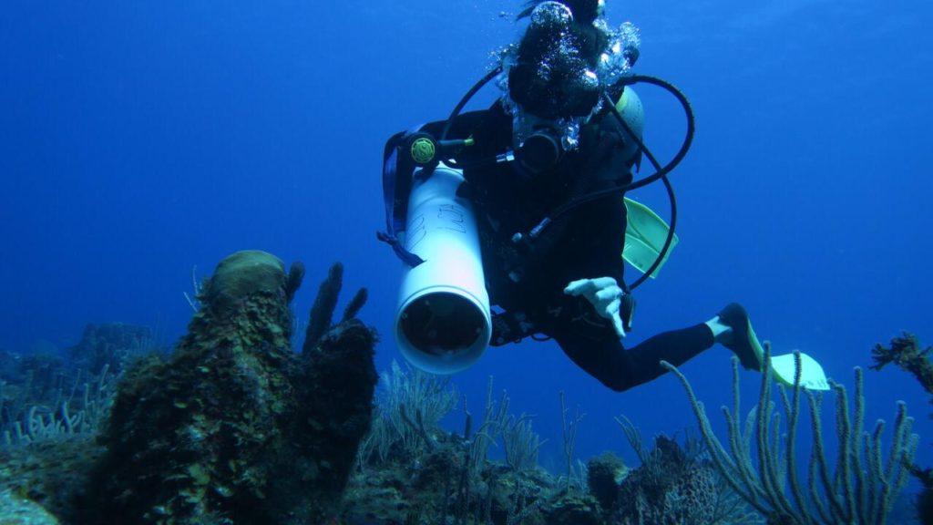riviera-maya-coralino-arrecife-sustentur-2019