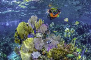 alltournative-turismo-quintana-roo-cancun-sustentur